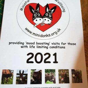Minidonks 2021 Calendar